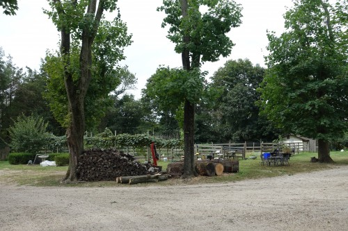 Peter Paniccia's Farm in Long Island